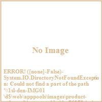 Imax Worldwide 76272 Frost Awakening Wood Framed Oil Painting