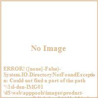 Sea Gull Lighting 94461 12 24V 250W Single Output Magnetic Transformer