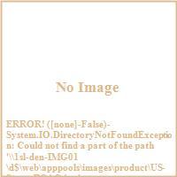 United States Stove Company BCAC 2 000 Sq. Ft. Coal Burni...