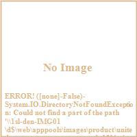 United States Stove Company AGDV12L 11 000 BTU Direct Vent Heater