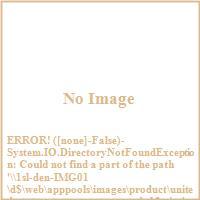 United States Stove Company AGDV12N 11 000 BTU Direct Vent Heater