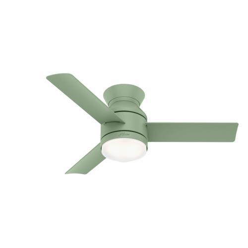 Hunter Fans 500 Dublin - 44 Inch Ceiling Fan with Light Kit