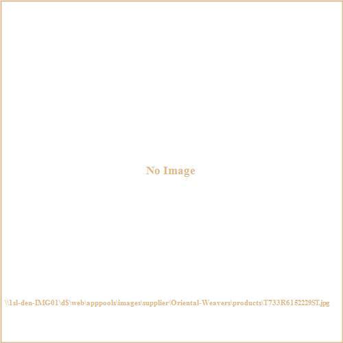 Oriental Weavers T733R6 Tybee - Indoor Area Rug