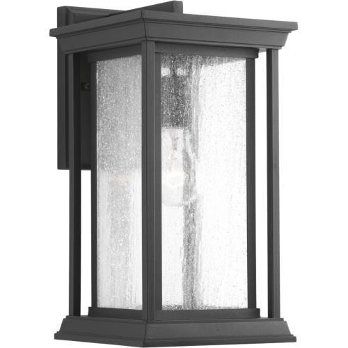 Progress Lighting P5610-31 Endicott - One Light Outdoor Medium Wall Lantern