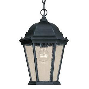 Richmond - One Light Outdoor Hanging Lantern