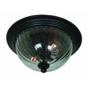 Annapolis - Two Light Outdoor Ceiling Mount