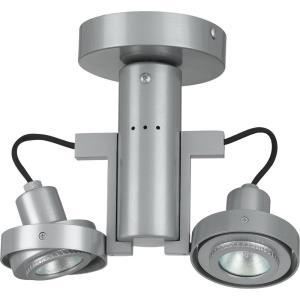 Two Light Spot Lamp