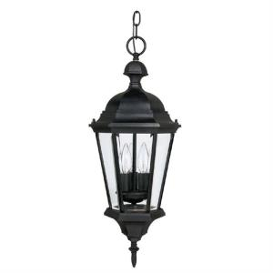 Carriage House - Three Light Outdoor Hanging Lantern