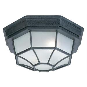 11 Inch 2 Light Outdoor Flush Mount
