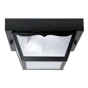 5 Inch 2 Light Outdoor Flush Mount - in Traditional style - 10 high by 5 wide