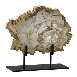 12 Inch Medium Petrified Wood on Stand