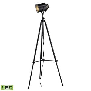 Ethan - 74 Inch 9.5W 1 LED Floor Lamp