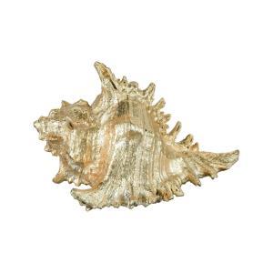 Queen Conch - 8.3- Inch Decorative Accessory