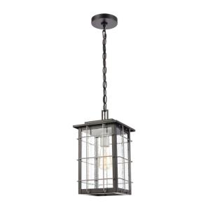 Brewster - 1 Light Outdoor Hanging Lantern in Transitional Style with Southwestern  and Country inspirations - 15 Inches tall and 8 inches wide