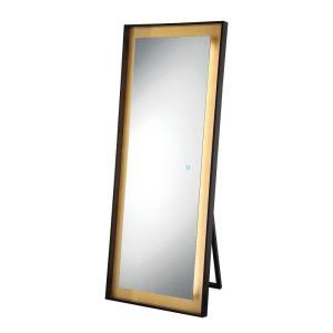65 Inch 65W 1 LED Rectangular Edge-Lit Gold Leaf Mirror