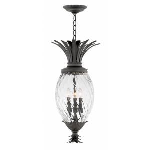 Plantation - Four Light Outdoor Small Hanging Lantern