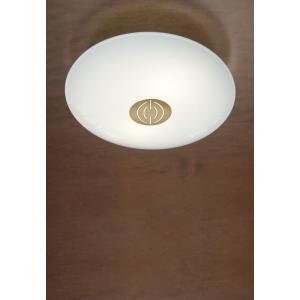 9.5 Inch 29W 1 LED Small Flush Mount