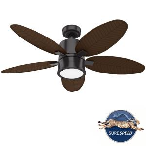 Amaryllis-5 Blade Ceiling Fan with Light Kit and Handheld Remote in Transitional Style-52 Inches Wide by 16.23 Inches High