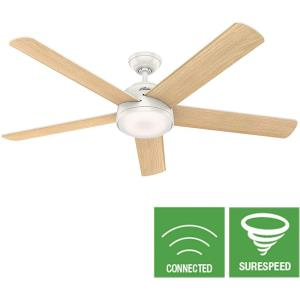 Romulus - 60 Inch Ceiling Fan with Light Kit and Remote Control