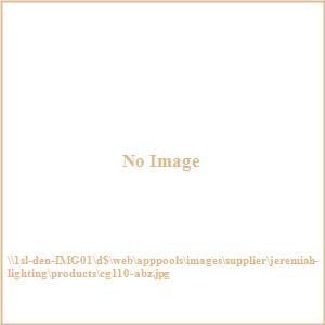 Accessory - 5 Inch Mini Pendant Cage