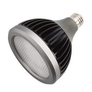 Accessory - 4.75 Inch 17W 4200K 40 Degree 7 PAR38 LED Replacement Bulb