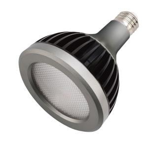 Accessory - 4.75 Inch 13W 3000K 40 Degree 5 PAR30L LED Replacement Bulb