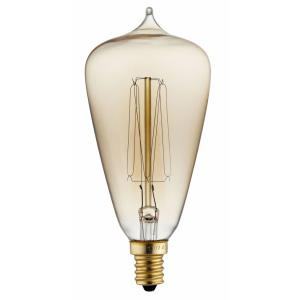 Accessory - 40W S21 Antique Style Edison Replacement Bulb