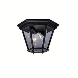 Trenton - 2 light Outdoor Flush Mount - 7.25 inches tall by 10.75 inches wide