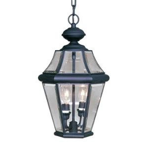 Georgetown - Two Light Outdoor Hanging