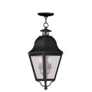 Amwell - Two Light Outdoor Hanging Lantern