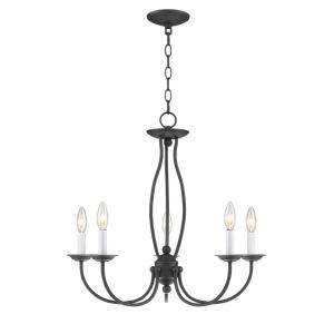 Home Basics - 5 Light Chandelier in Home Basics Style - 23 Inches wide by 21.5 Inches high
