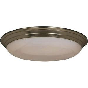 Classic EE-2 Light Flush 22w-32w in Other style-17 Inches wide by 4 inches high