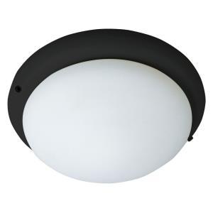 Accessory - 1 Light Ceiling Fan Light Kit
