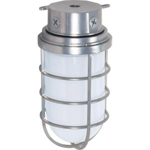 One Light Vapor Proof Large Outdoor Flush Mount
