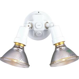 Two Light Flood Lamp