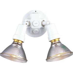 Two Light Flood Lamp