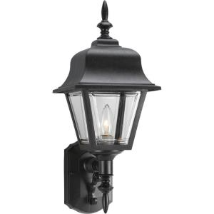 Non-Metallic Incandescent - Outdoor Light - 1 Light in Traditional style - 8 Inches wide by 20 Inches high