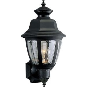 Non-Metallic Incandescent - Outdoor Light - 1 Light in Traditional style - 8 Inches wide by 16 Inches high