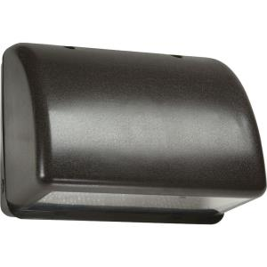 17.28 Inch One Light Outdoor Wall Sconce