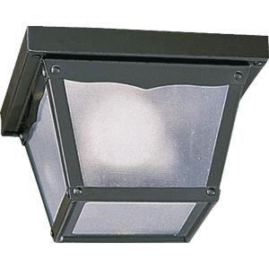 7.5 Inch One Light Outdoor Cage Flush Mount