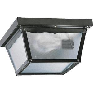 Two Light Outdoor Cage Flush Mount