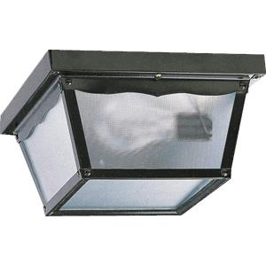 9.25 Inch Two Light Outdoor Cage Flush Mount
