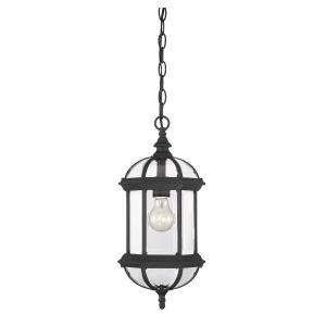 1 Light Outdoor Hanging Lantern-Traditional Style with Transitional and Rustic Inspirations-18 inches tall by 8.25 inches wide