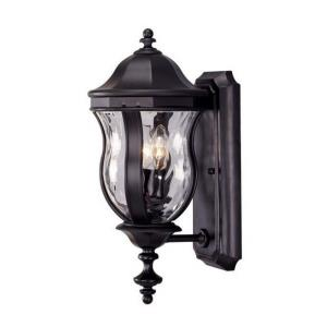 2 Light Outdoor Wall Lantern-Traditional Style with Country French and Transitional Inspirations-17.88 inches tall by 7.88 inches wide