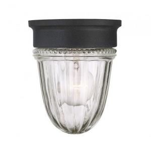 Exterior Collections - 1 Light Jelly Jar Outdoor Wall Lantern