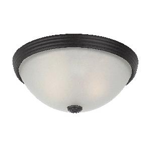 "Two Light 11"" Flush Mount"