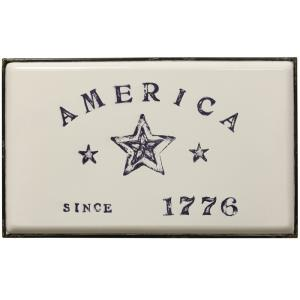 Declare Independence Traditional Americana - 26.8 Inch Wall Art