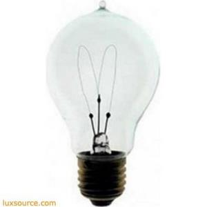 Accessory - Incandescent Medium Base T8 120 Volt Replacement Lamp
