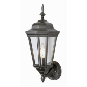 Waldorf - One Light Outdoor Hanging Lantern
