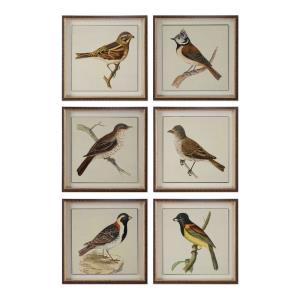 """Spring Soldiers - 15"""" Bird Decorative Wall Art (Set of 6)"""